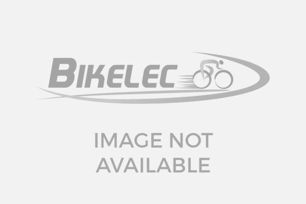R.X750 Pro (HT)