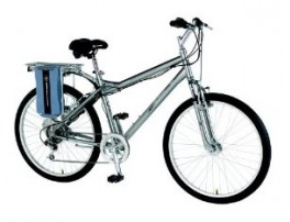 Currie EZip Step Electric Bike.