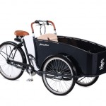 Triciclos eléctricos