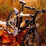 Guía práctica para comprar una bicicleta