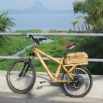 bicicleta electrica de montaña en madera