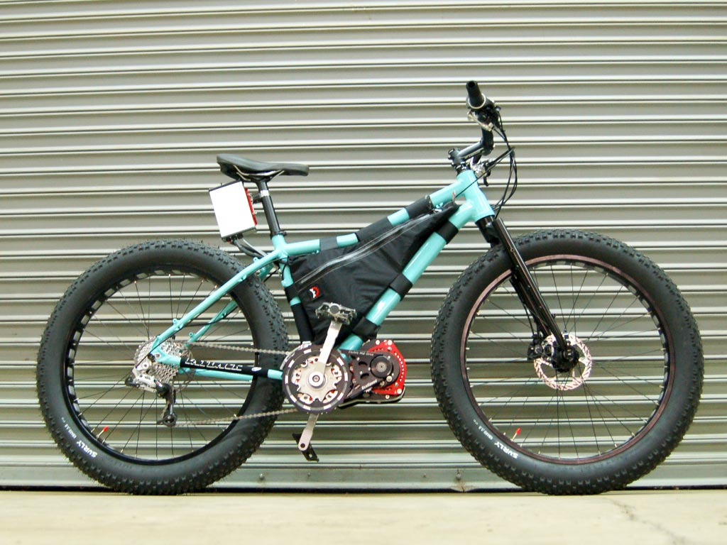 ecospeed-fatback bike
